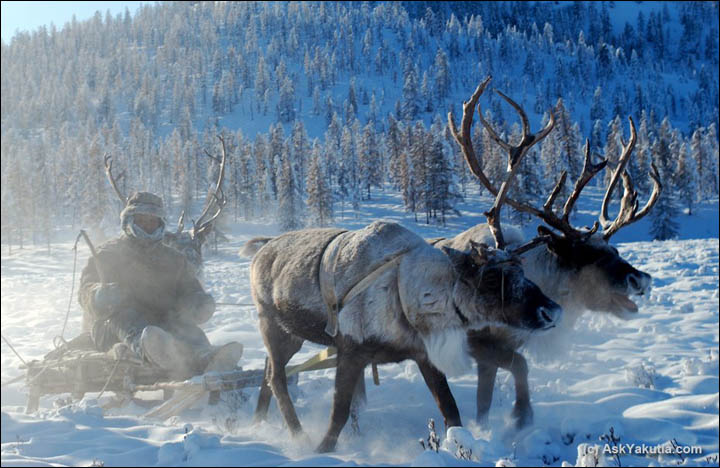 what to do in Yakutia